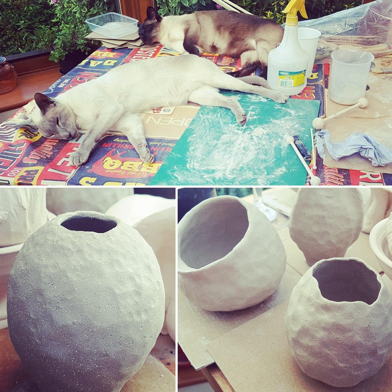 Lazy cats doing ceramics