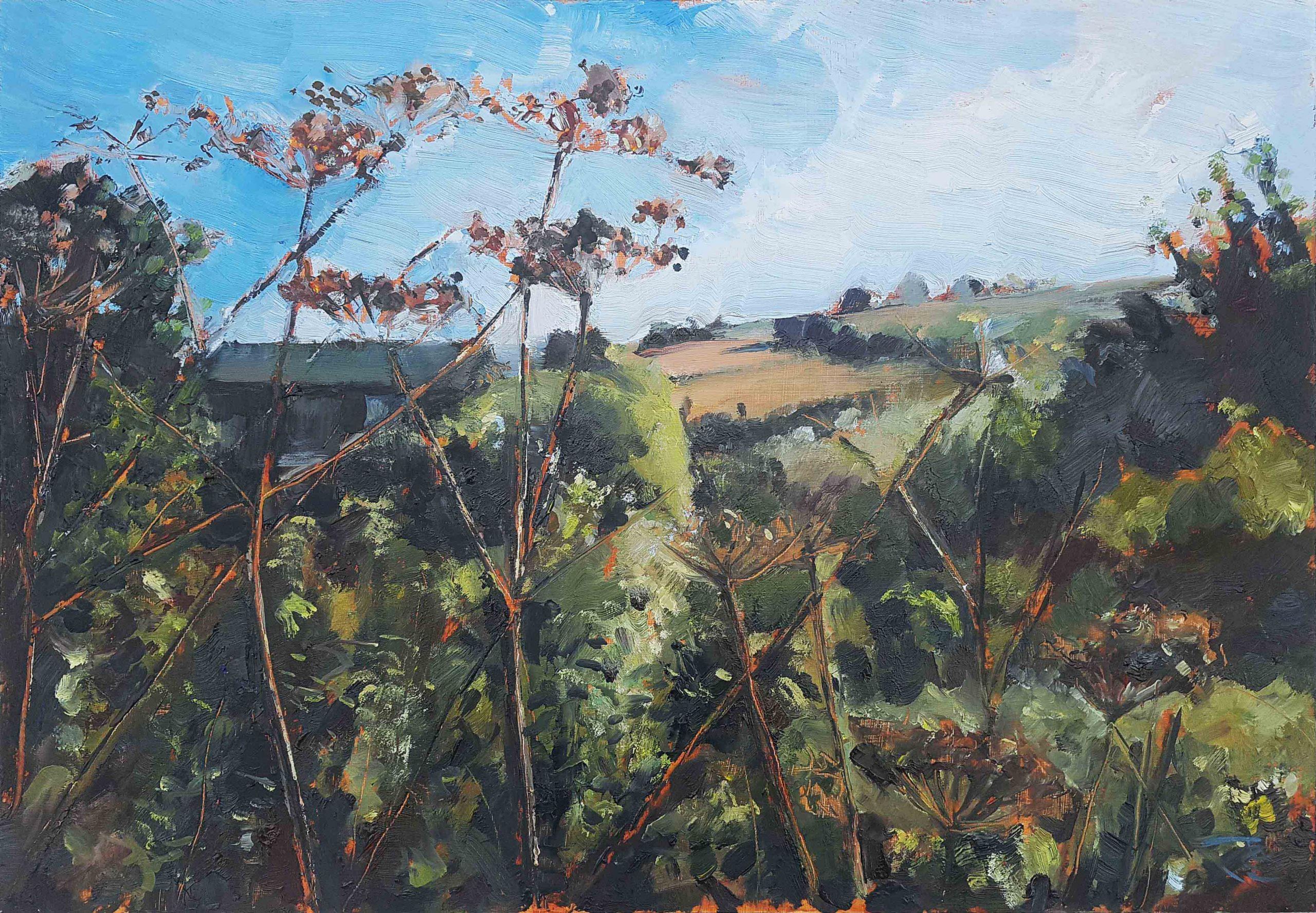 Sanctuary Landscape Painting Showing Summery Fields, Umbellifer seed heads and Undergrowth