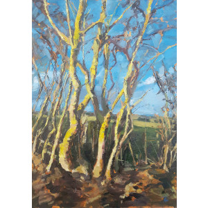 An oil painting of bare Lichen Covered Trees in a landscape by Julia Brown