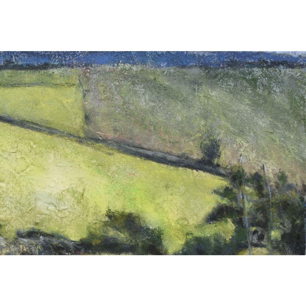 'Section #5 - Field Patterns Summer' - Detail 1   Julia Brown